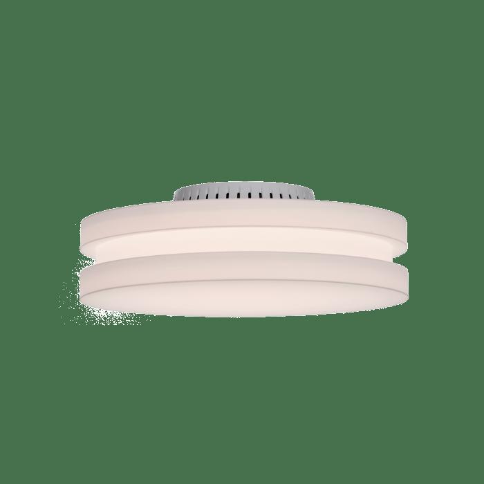 sandwich chameleon lighting